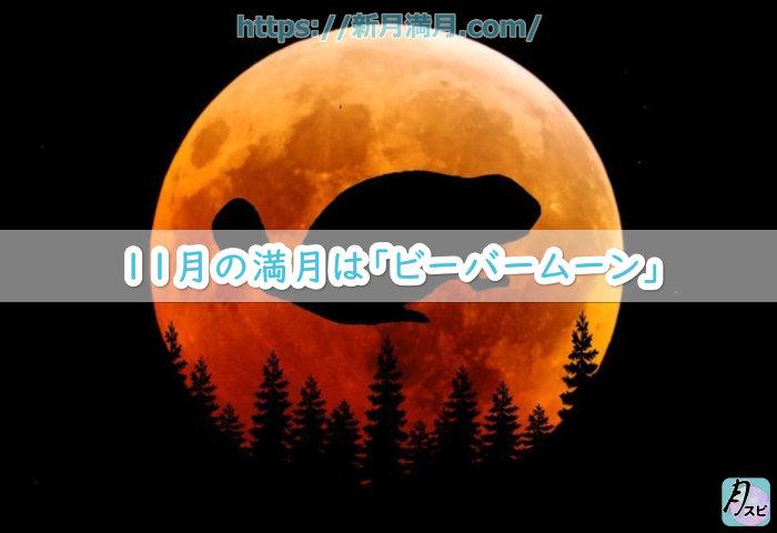 11月の満月は「ビーバームーン」