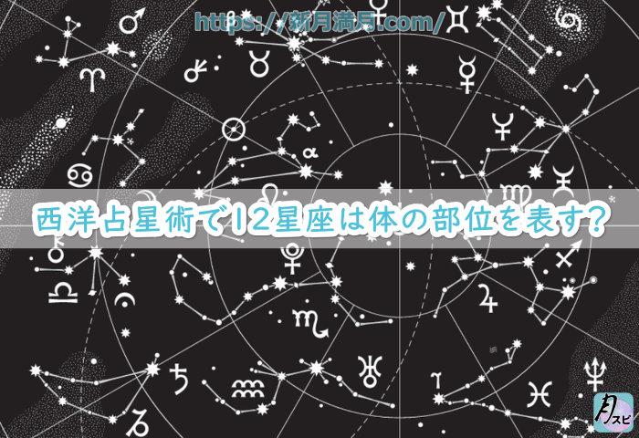 西洋占星術で12星座は体の部位を表す?