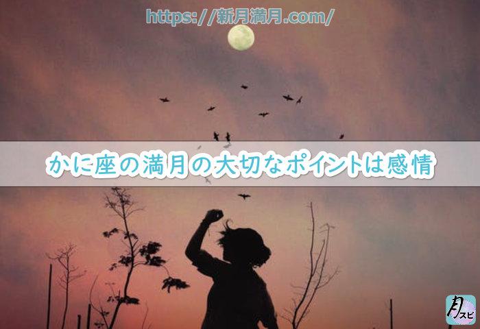 かに座の満月の大切なポイントは感情